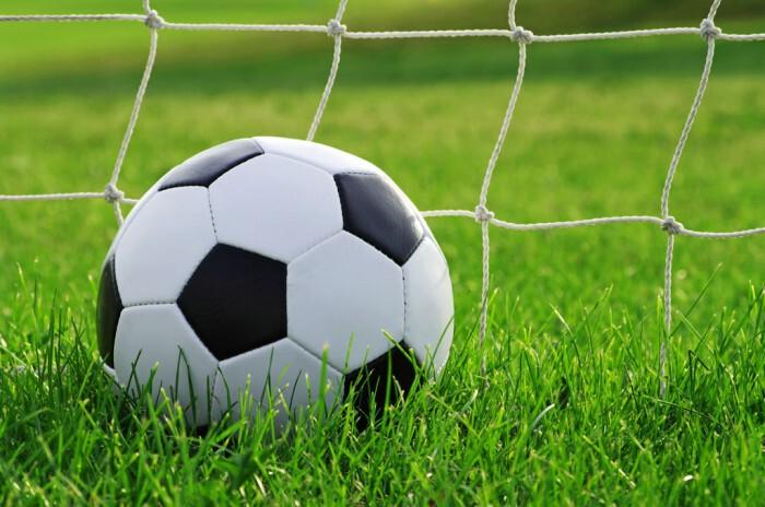 Có nên kinh doanh đầu tư sân bóng cỏ nhân tạo hay không? - Ý Tưởng Kinh  Doanh | Kiến Thức Kiếm Tiền Online