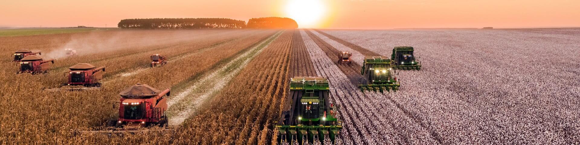Định hướng nghề nghiệp với ngành Kinh tế nông nghiệp là gì