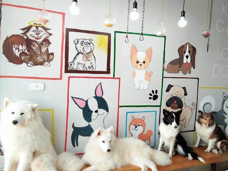 Lập kế hoạch kinh doanh quán cafe thú cưng | Nội Thất Trường Sa